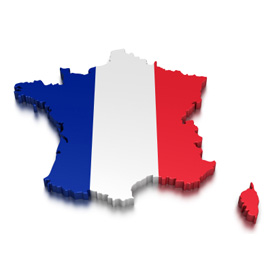 Purchase EasyRealEstateScript French (FR) Version